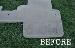 DIY Spot Carpet Cleaner {perfect for cars!}