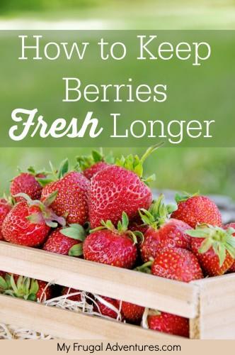 How to keep Berries Fresh Longer