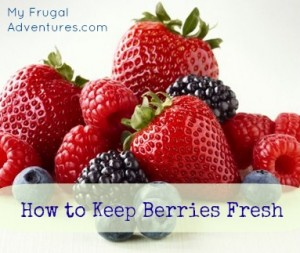how to keep berries fresh in refrigerator