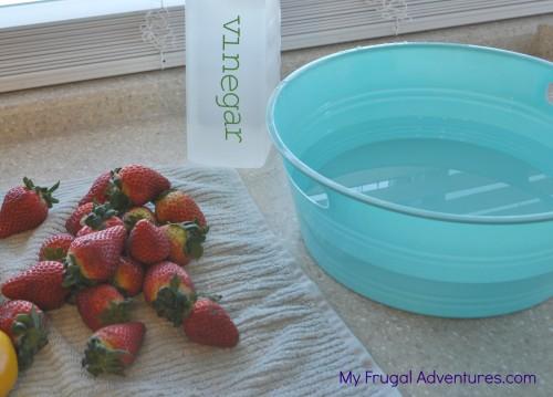 How to Keep Strawberries Fresh