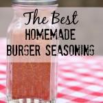 The Best Homemade Hamburger Seasoning (amp up your burgers!)