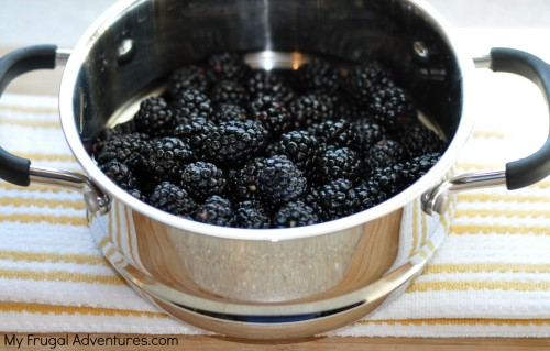 Blackberry Jam Recipe