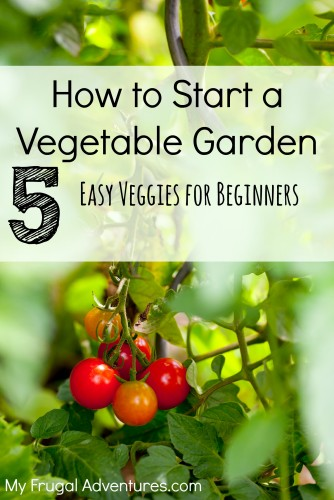 20 outdoor diy projects for an amazing yard my frugal adventures for How to start a backyard garden