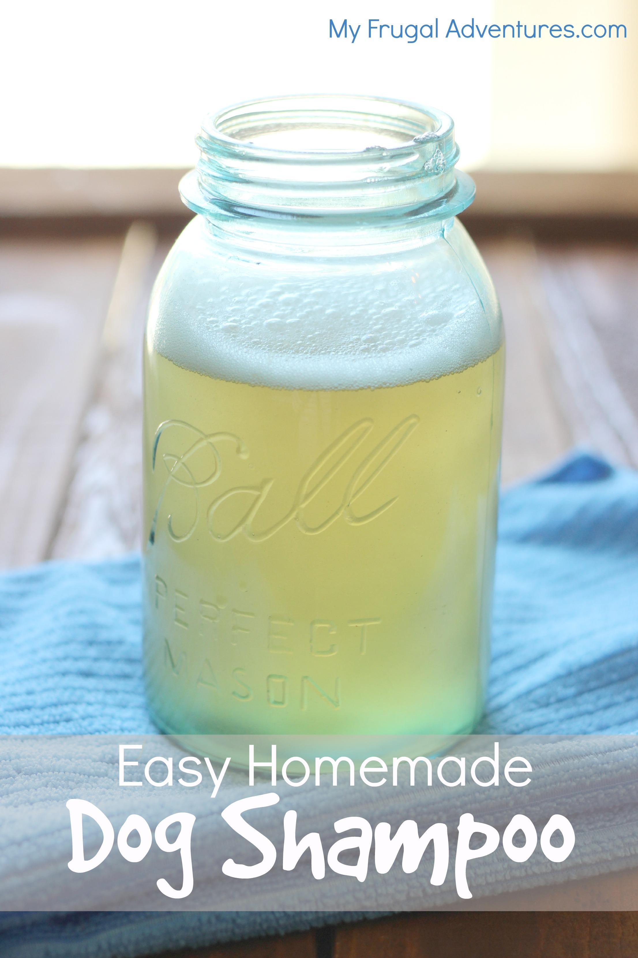 Homemade Dog Shampoo Recipe - My Frugal