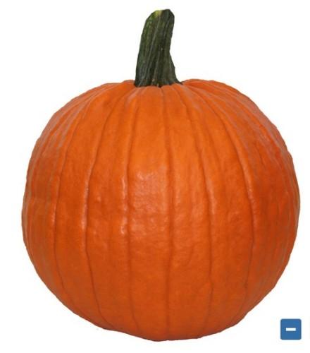 pumpkinsale