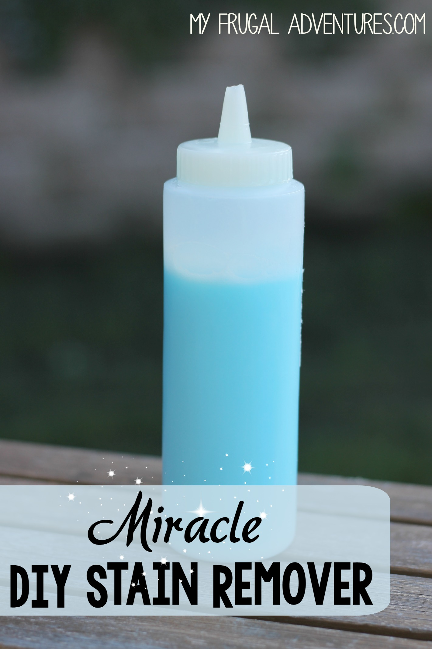 DIY Stain Remover {Removes Almost Any Stain!} - My Frugal ...