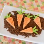 Mini carrot wafers