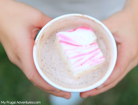 Homemade Peppermint Marshmallow Recipe