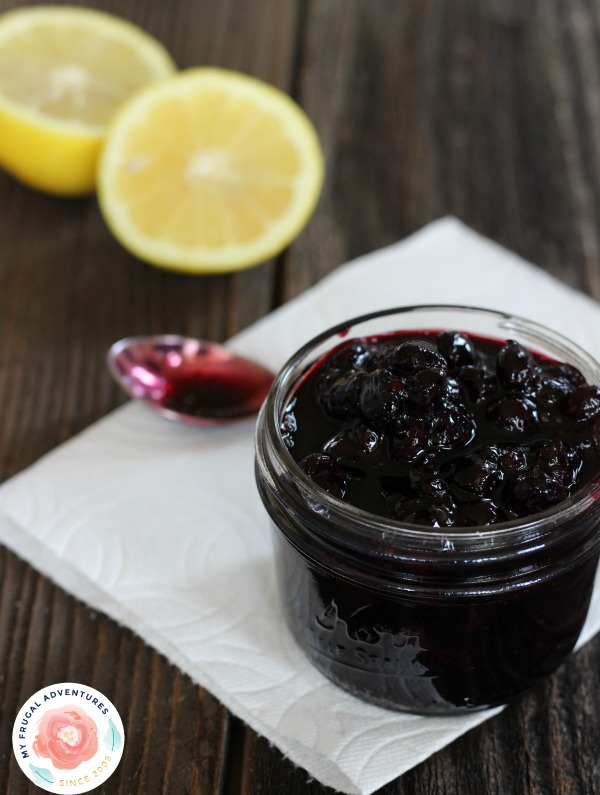 Homemade Blueberry Sauce