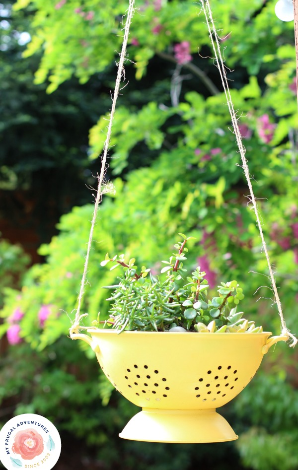 How to create a colander planter