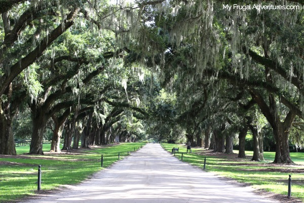 boone-hall-in-charleston