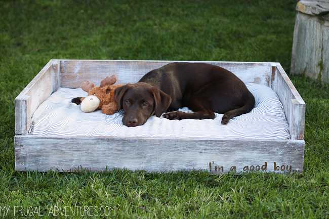Dog Bed Tutorial - My Frugal Adventures