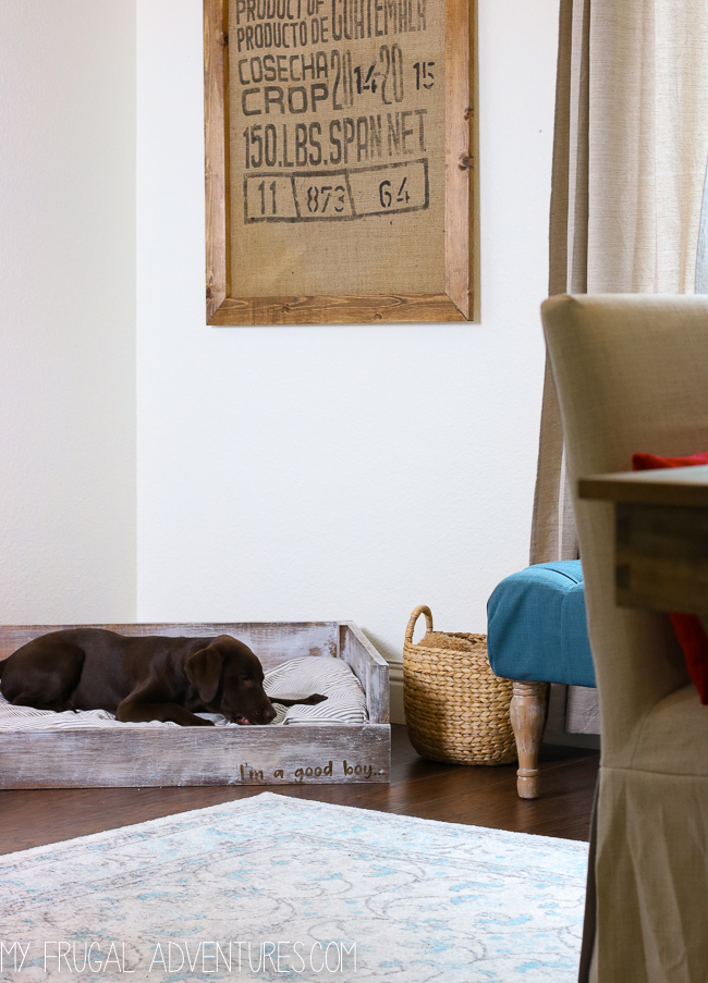 Dog Bed Tutorial via My Frugal Adventures