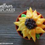 Sunflower Cupcake Recipe